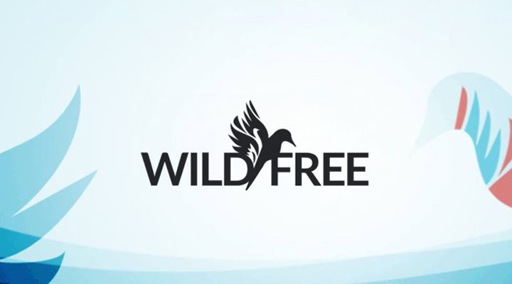 Wild and Free Festival <br>